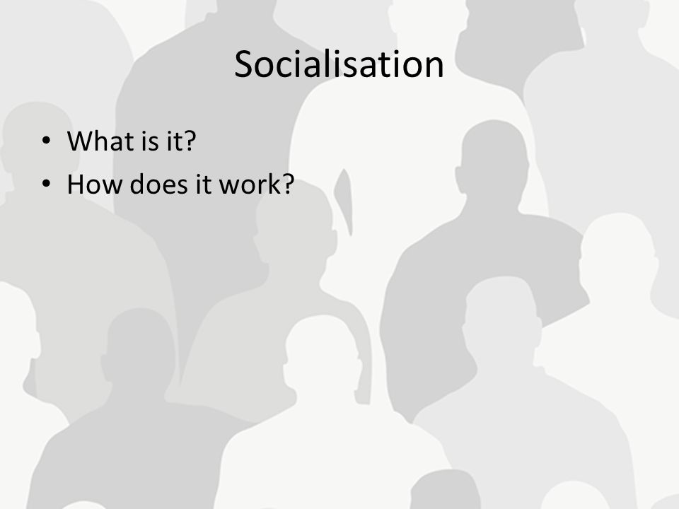 Socialisation What is it How does it work