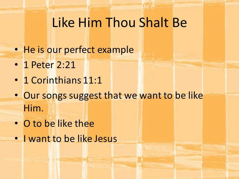 Like Him Thou Shalt Be He is our perfect example 1 Peter 2:21