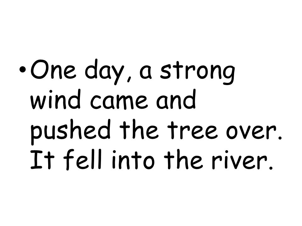 One day, a strong wind came and pushed the tree over