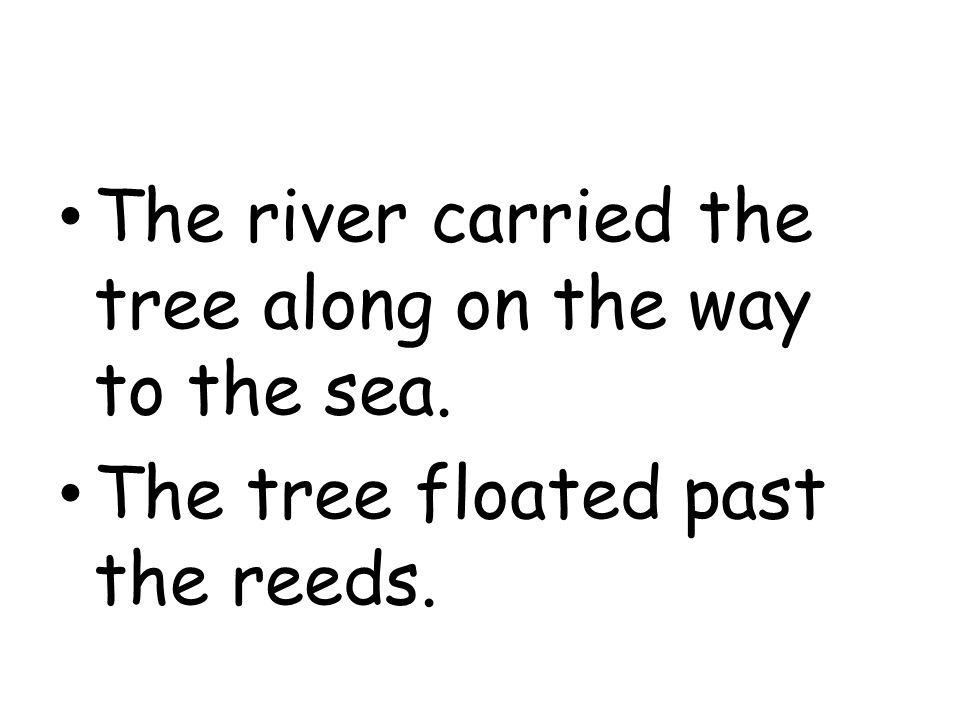 The river carried the tree along on the way to the sea.