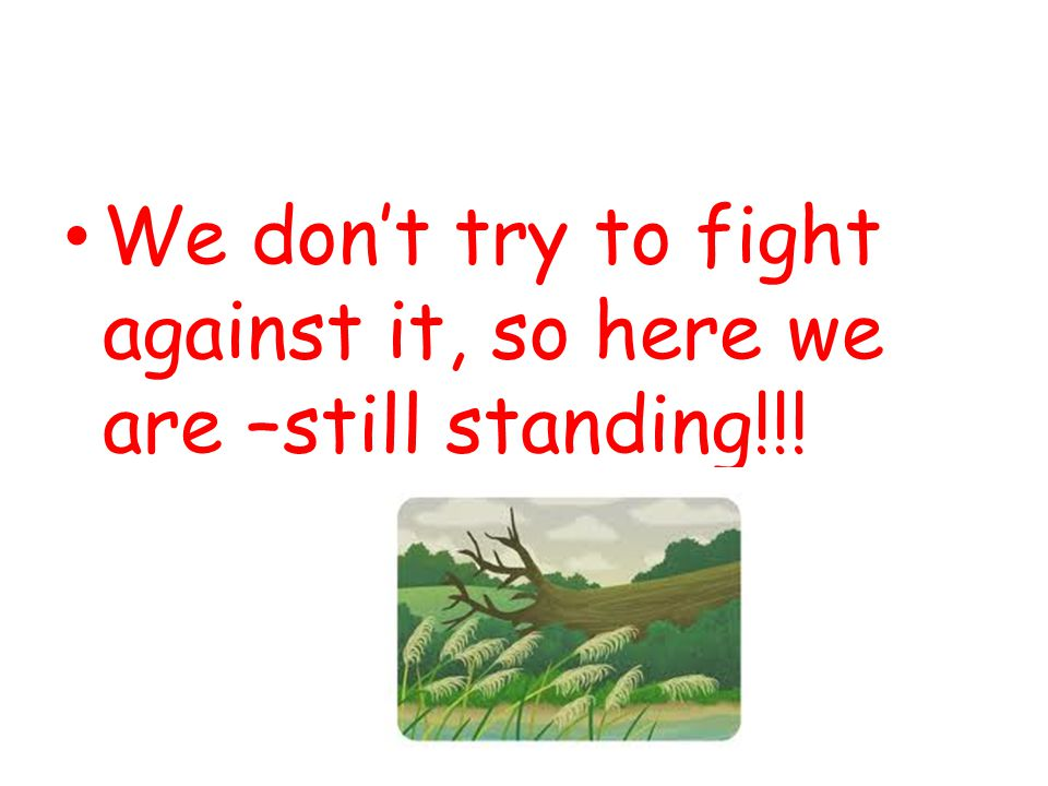 We don't try to fight against it, so here we are –still standing!!!