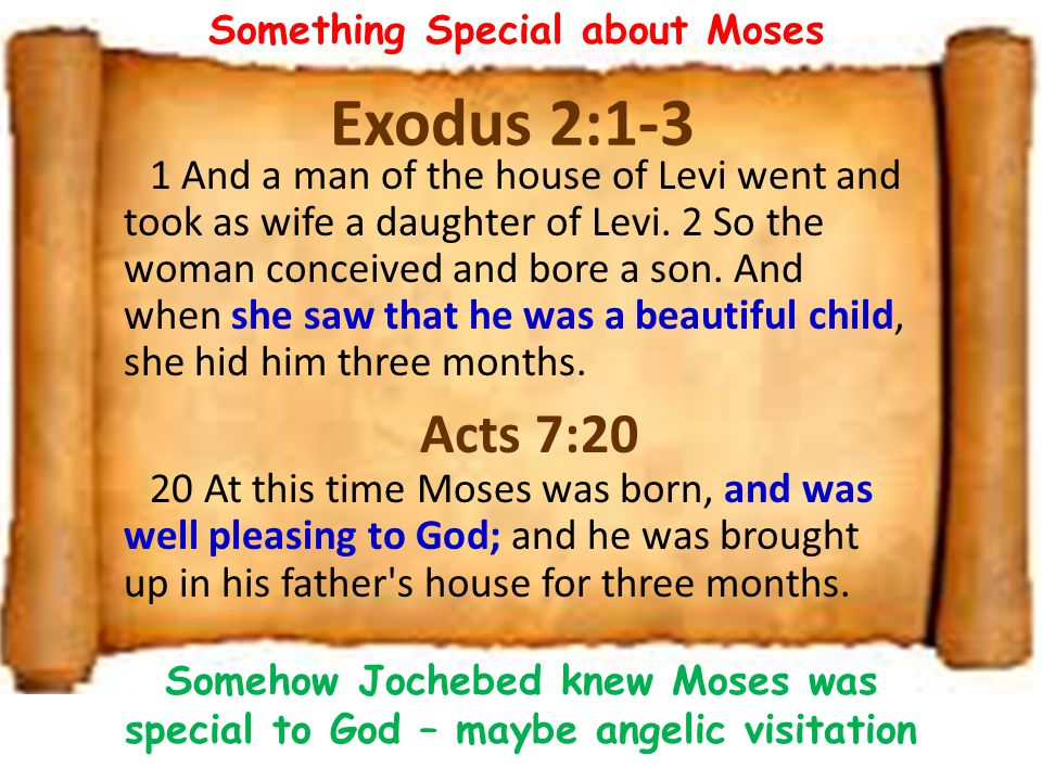 Something Special about Moses