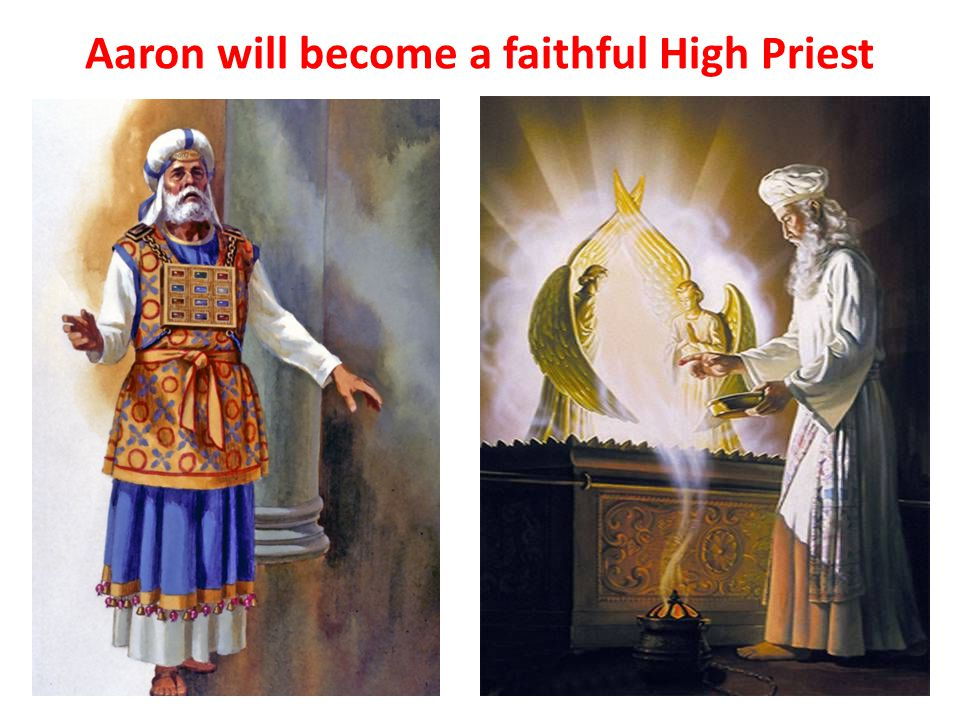 Aaron will become a faithful High Priest