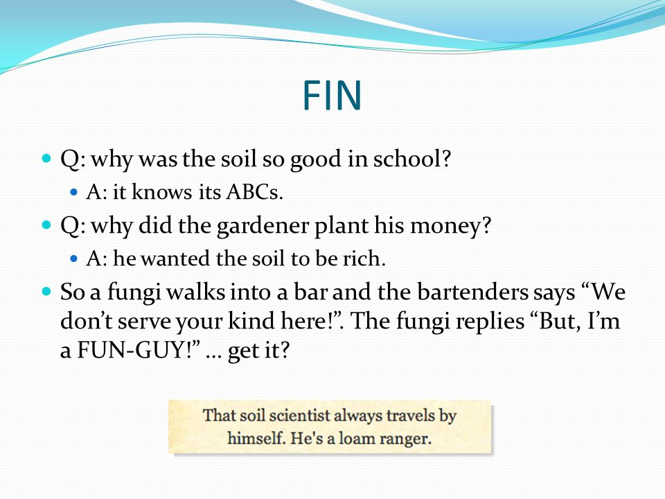FIN Q: why was the soil so good in school