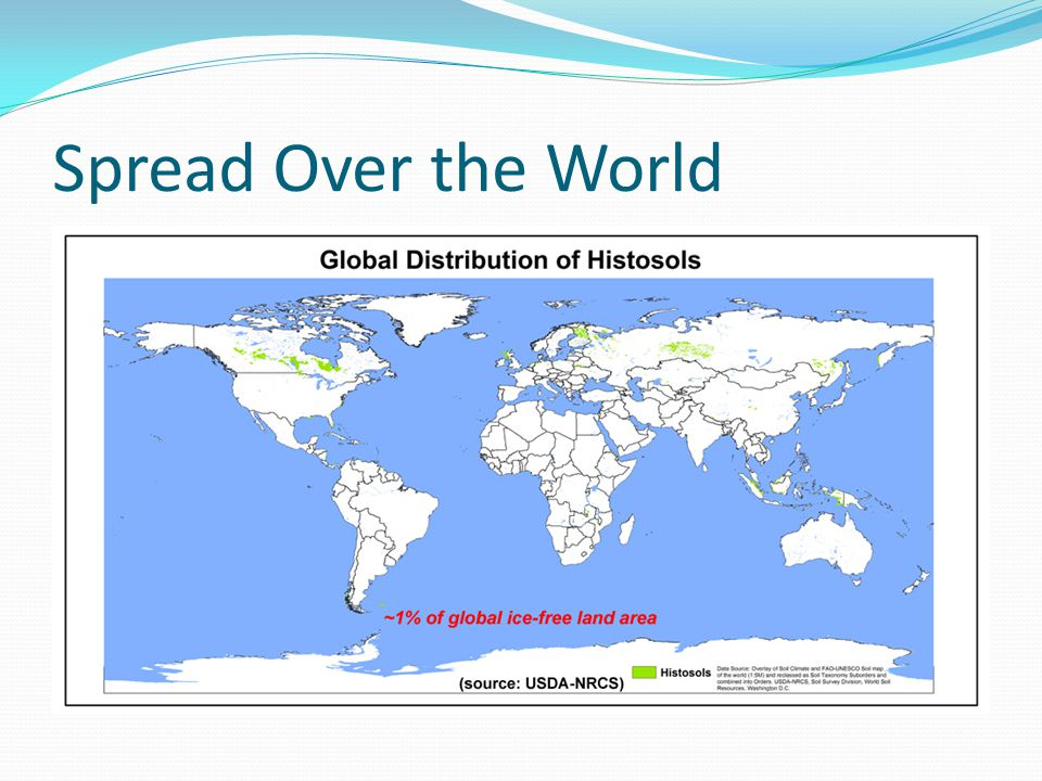 Spread Over the World