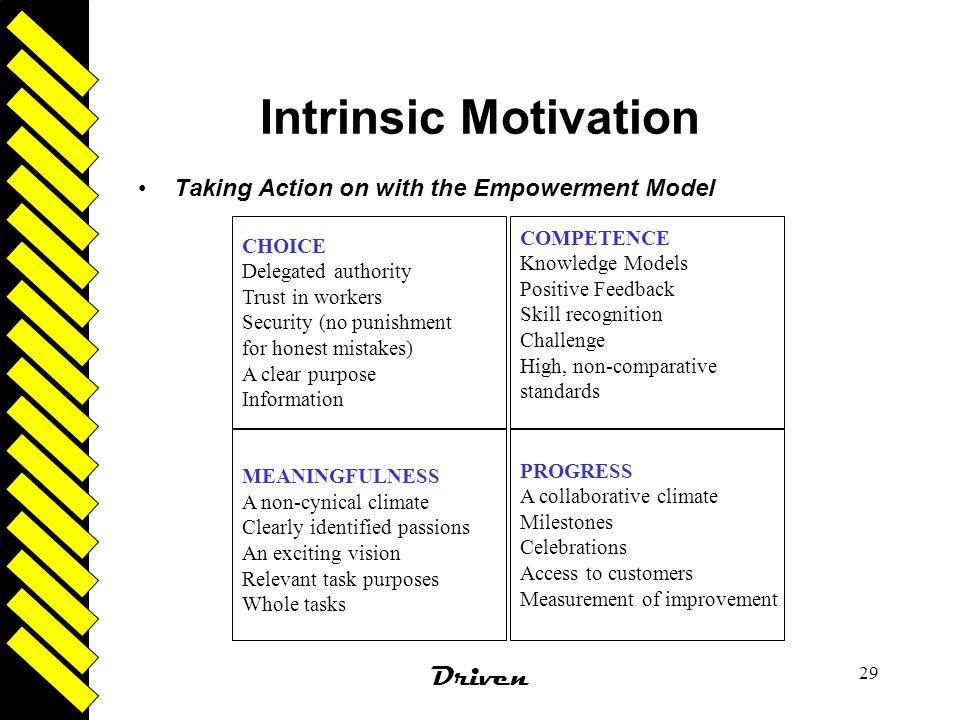 Intrinsic Motivation Driven