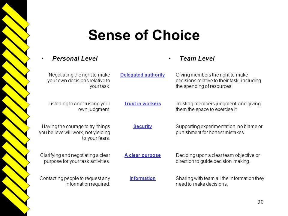 Sense of Choice Driven Personal Level Team Level
