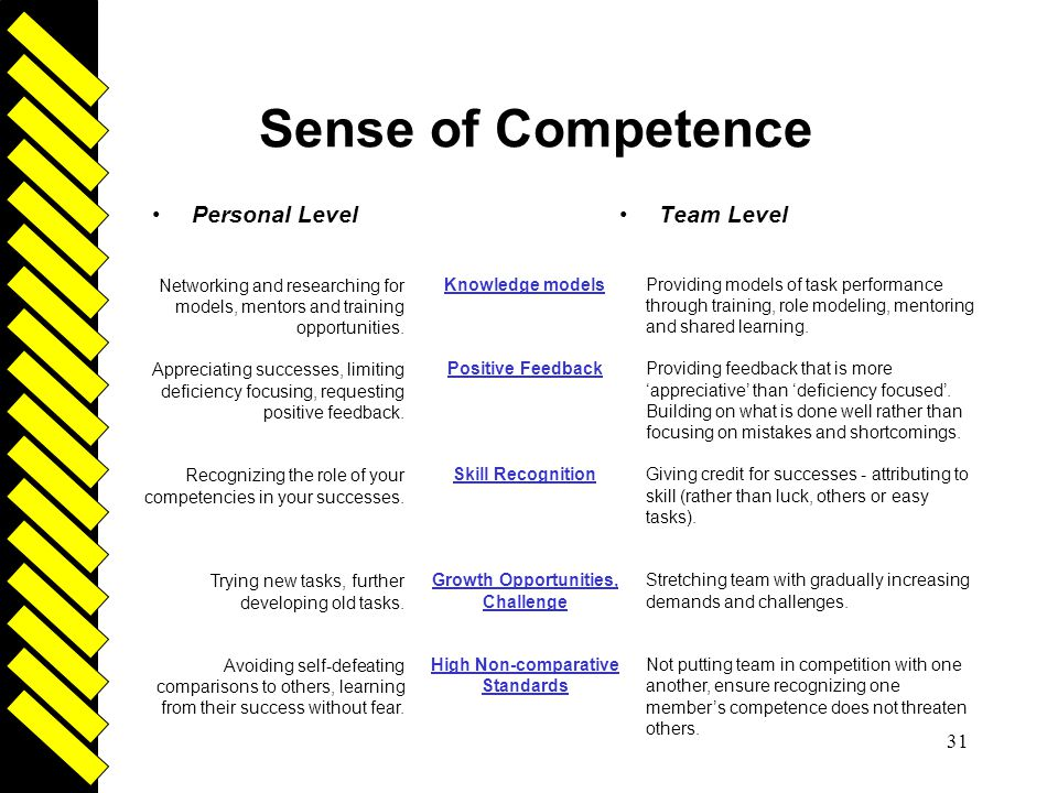 Sense of Competence Driven Personal Level Team Level