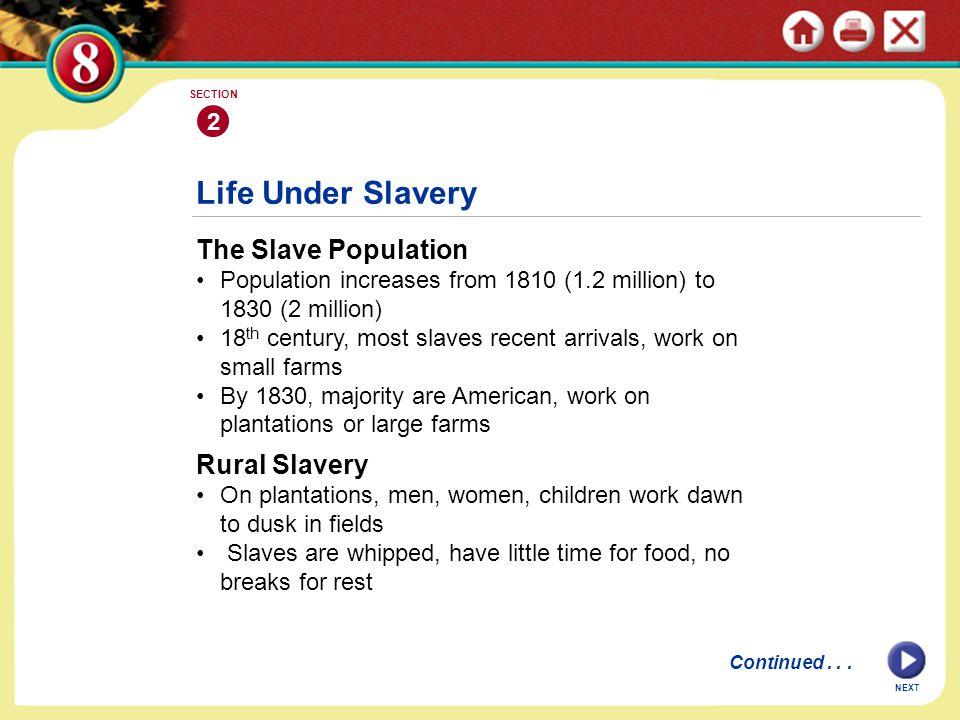 Life Under Slavery The Slave Population Rural Slavery 2