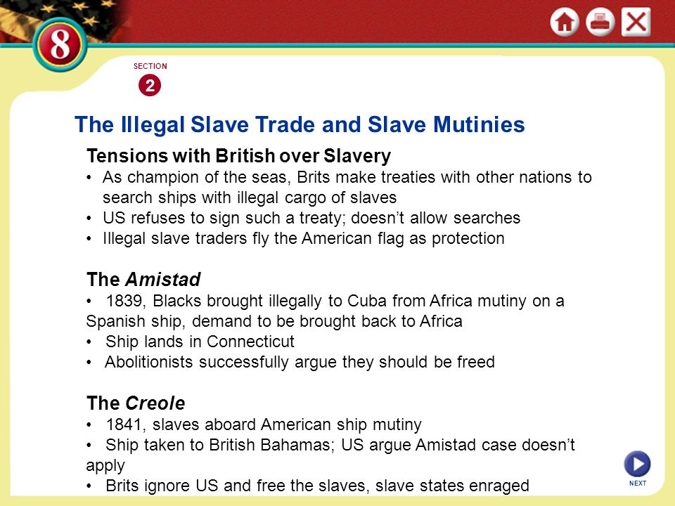 The Illegal Slave Trade and Slave Mutinies