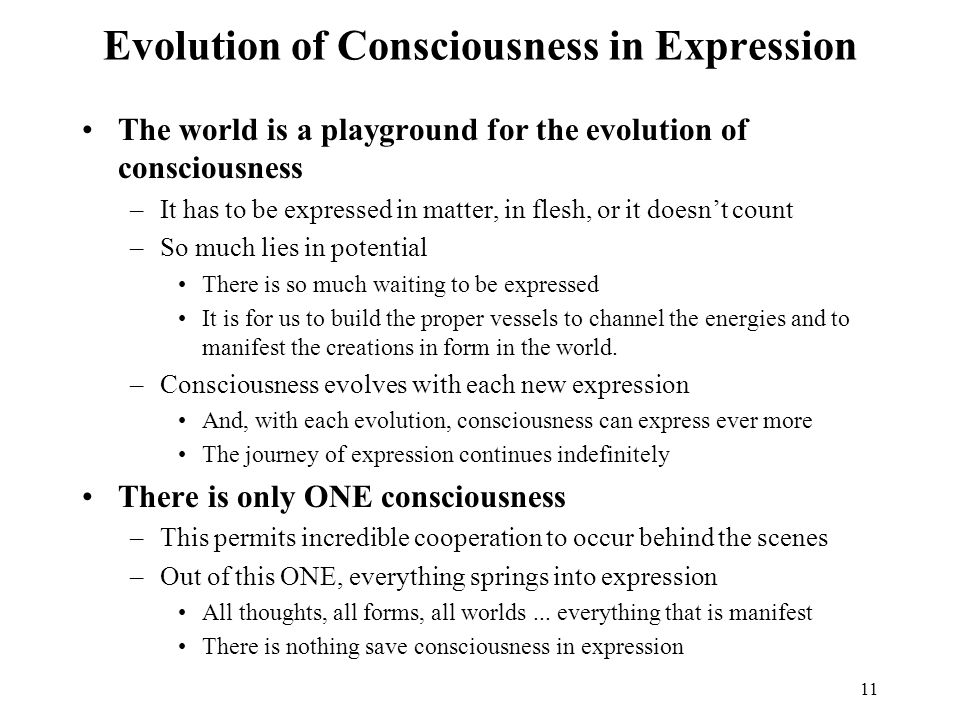 Evolution of Consciousness in Expression