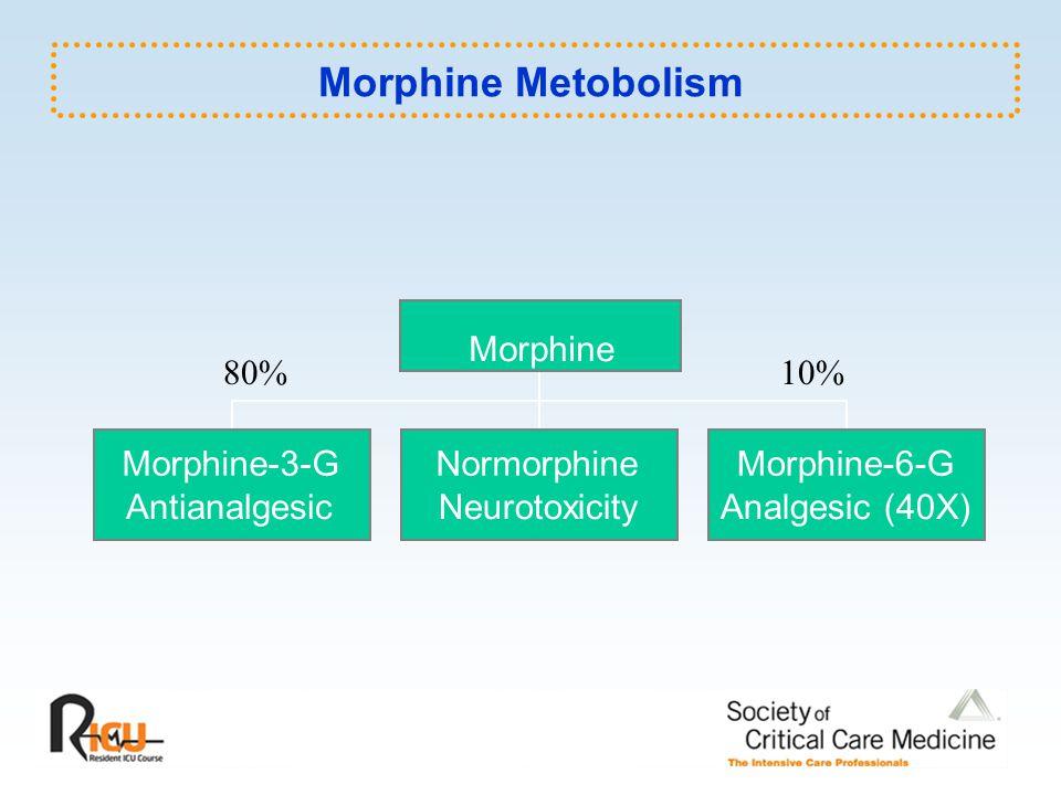 Morphine Metobolism Morphine 80% 10% Morphine-3-G Normorphine