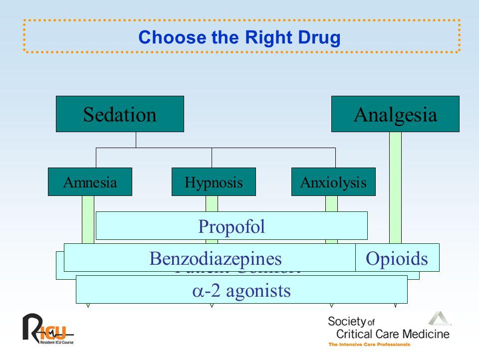 Sedation Analgesia Propofol Benzodiazepines Opioids Patient Comfort