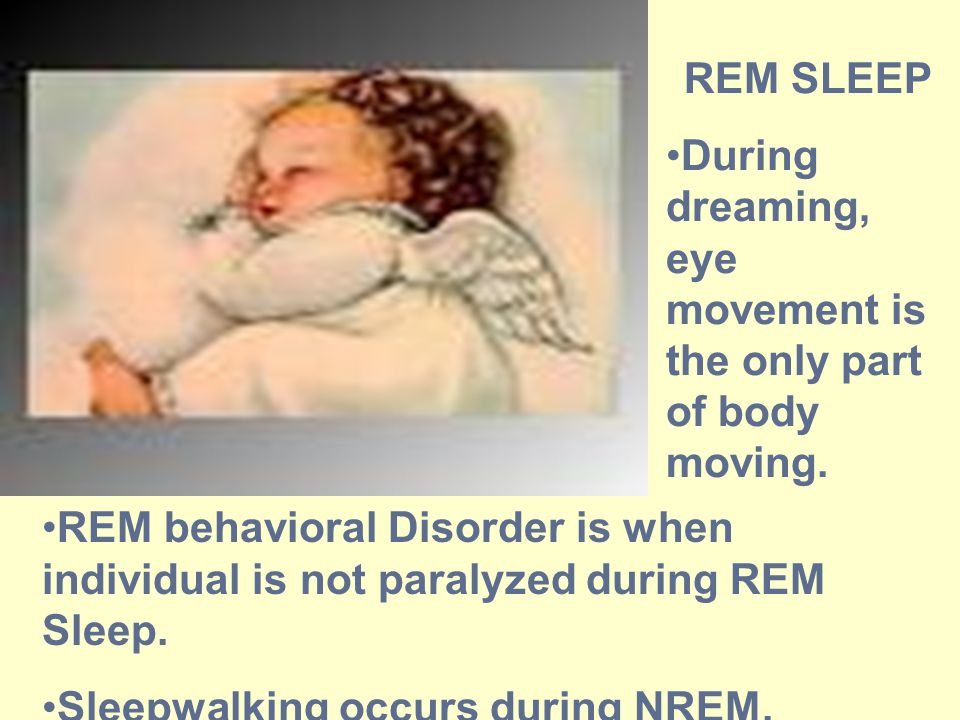 REM SLEEP During dreaming, eye movement is the only part of body moving.