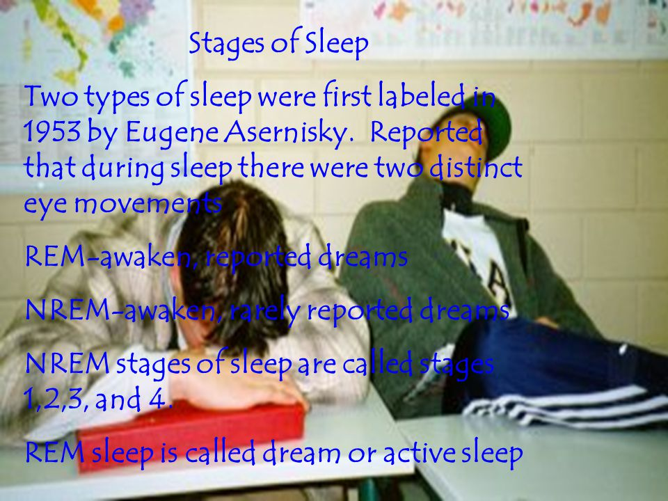 Stages of Sleep Two types of sleep were first labeled in 1953 by Eugene Asernisky. Reported that during sleep there were two distinct eye movements.