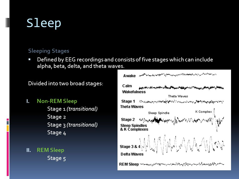 Sleep Sleeping Stages. Defined by EEG recordings and consists of five stages which can include alpha, beta, delta, and theta waves.