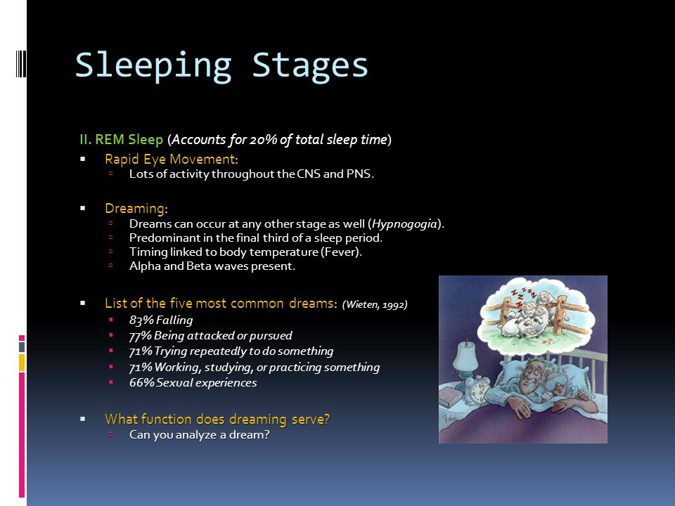 Sleeping Stages II. REM Sleep (Accounts for 20% of total sleep time)