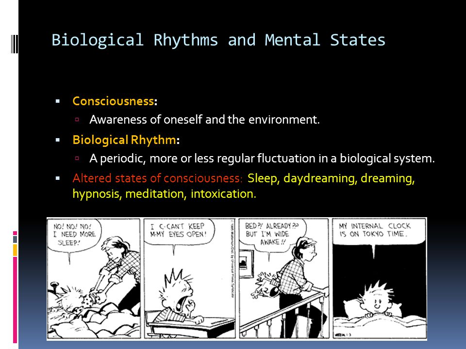 Biological Rhythms and Mental States