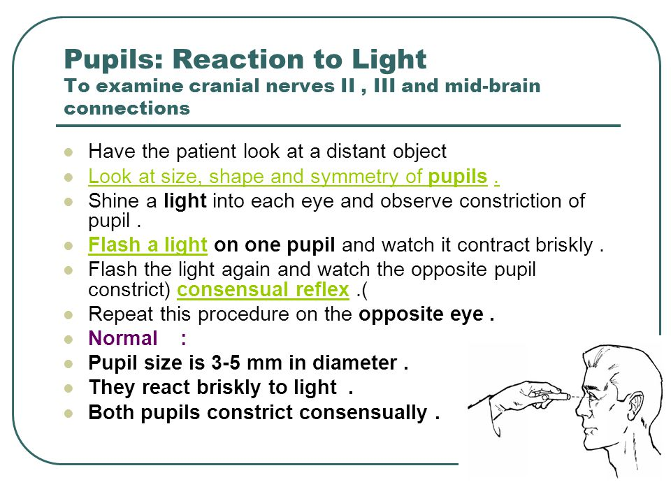 Pupils: Reaction to Light To examine cranial nerves II , III and mid-brain connections