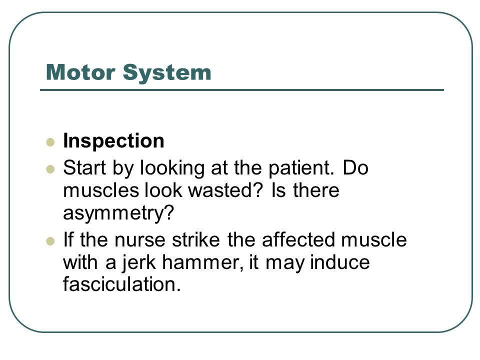 Motor System Inspection