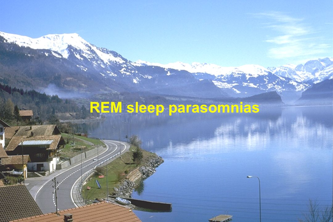 REM sleep parasomnias