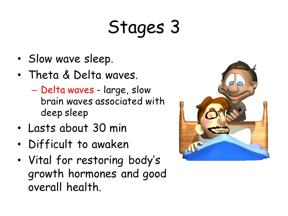 Stages 3 Slow wave sleep. Theta & Delta waves. Lasts about 30 min