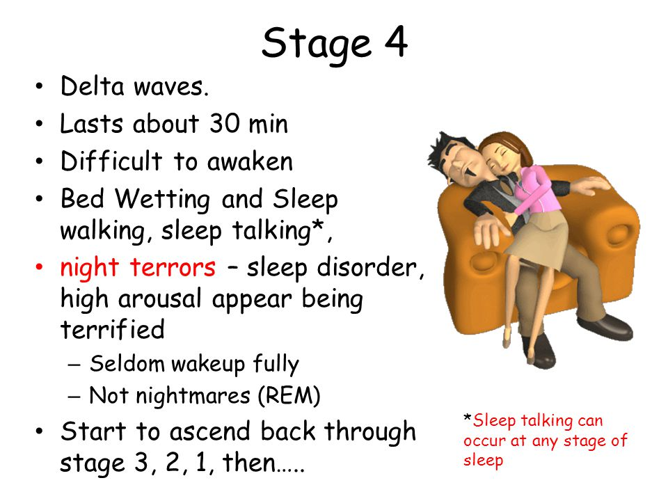 Stage 4 Delta waves. Lasts about 30 min Difficult to awaken