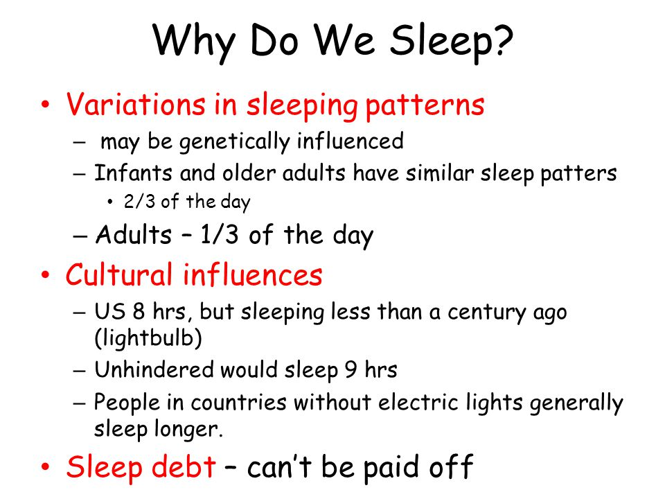 Why Do We Sleep Variations in sleeping patterns Cultural influences