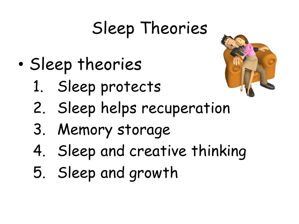 Sleep Theories Sleep theories Sleep protects Sleep helps recuperation