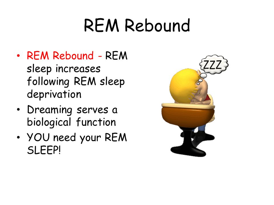 REM Rebound REM Rebound - REM sleep increases following REM sleep deprivation. Dreaming serves a biological function.