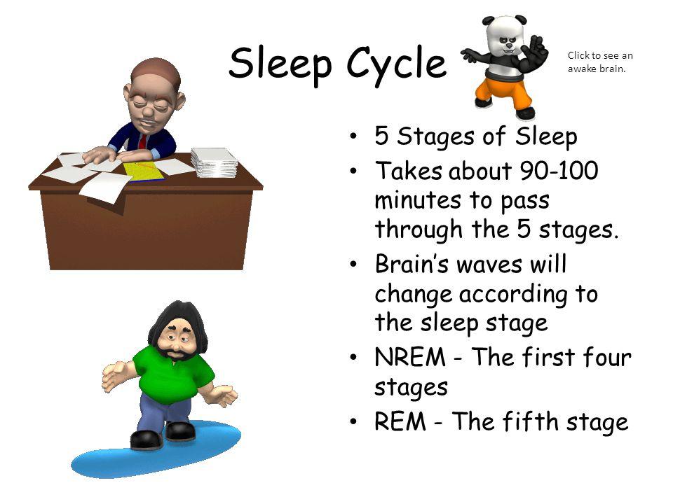 Sleep Cycle 5 Stages of Sleep