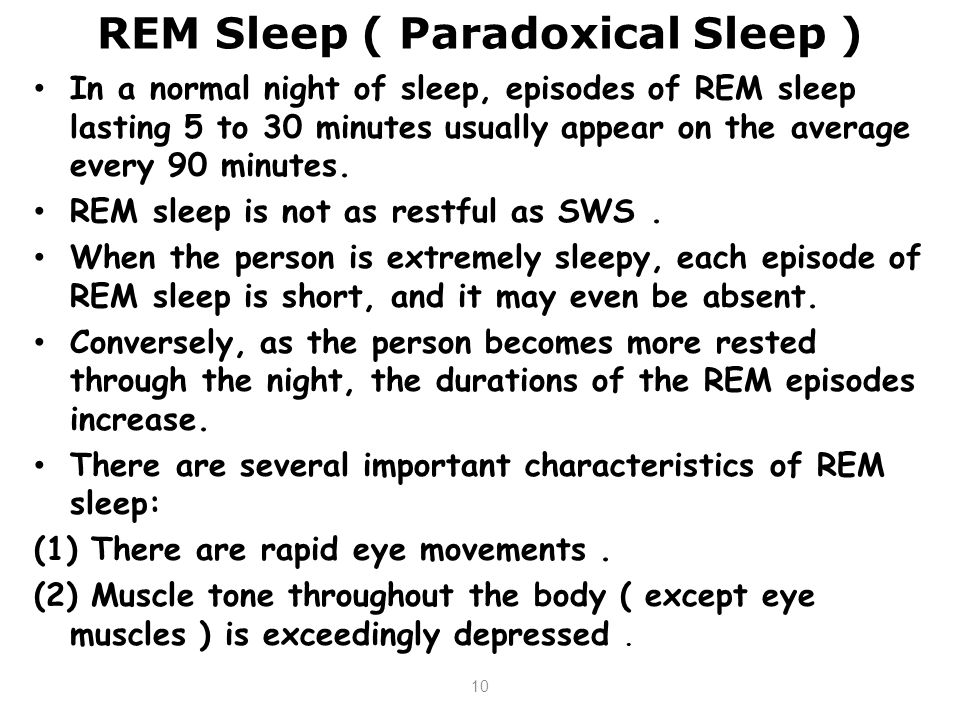 REM Sleep ( Paradoxical Sleep )