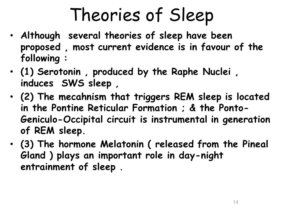 Theories of Sleep Although several theories of sleep have been proposed , most current evidence is in favour of the following :