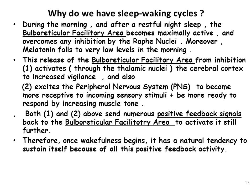 Why do we have sleep-waking cycles