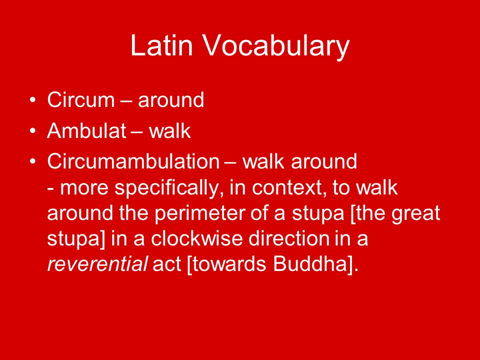 Latin Vocabulary Circum – around Ambulat – walk