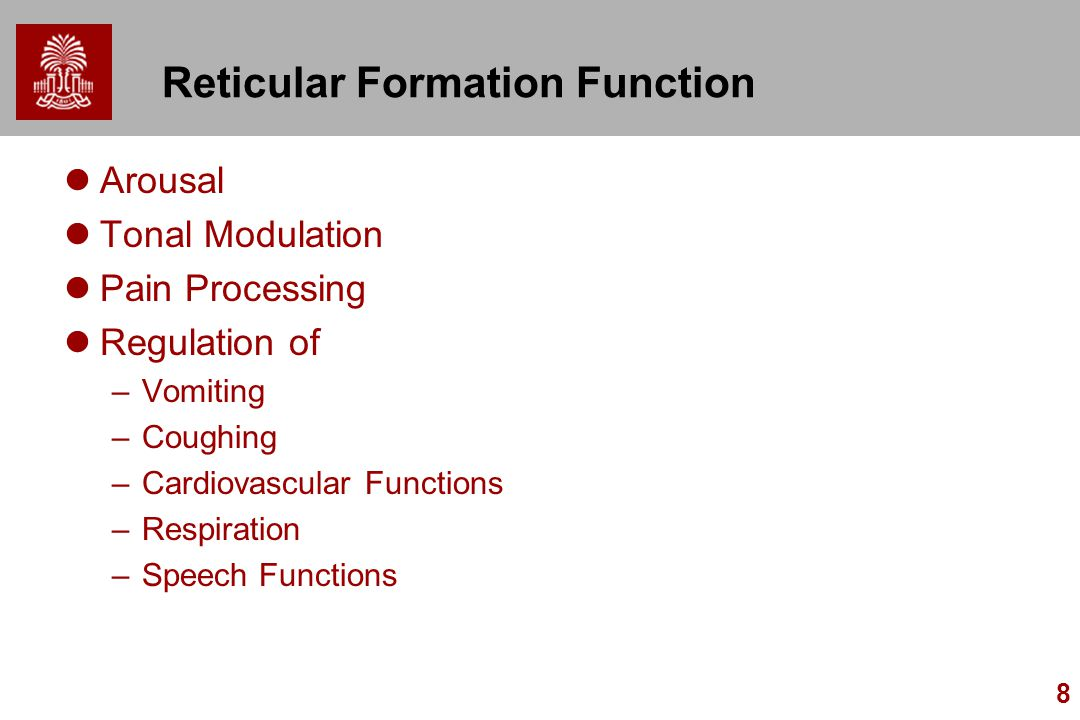function of reticular formation The brain is a complex organ that acts as the control center of the body as a component of the central nervous system, the brain sends, receives, processes, and directs sensory informationthe brain is split into left and right hemispheres by a band of fibers called the corpus callosumthere are three major divisions of the brain, with each division.