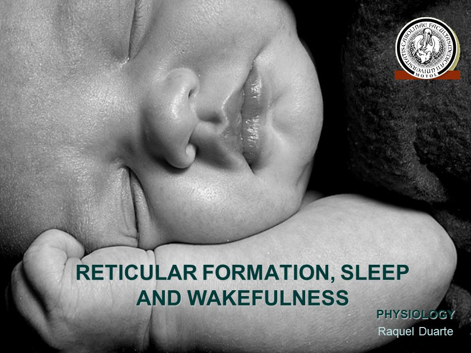 RETICULAR FORMATION, SLEEP AND WAKEFULNESS