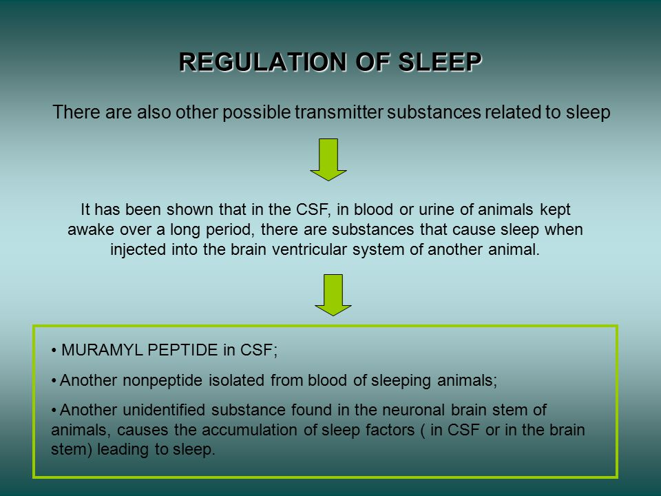 There are also other possible transmitter substances related to sleep