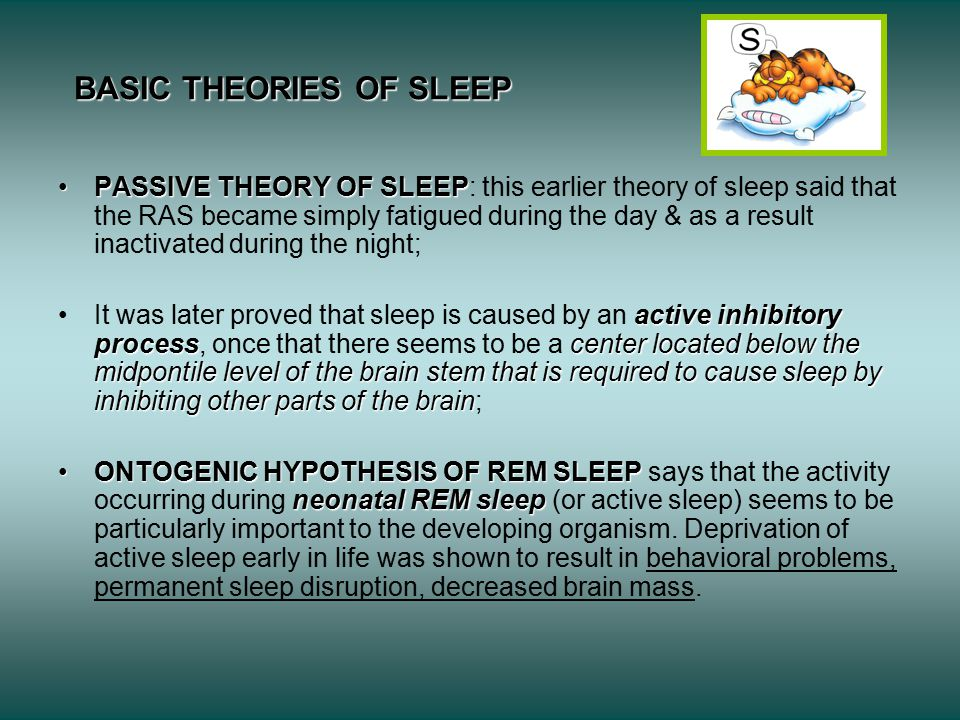 BASIC THEORIES OF SLEEP