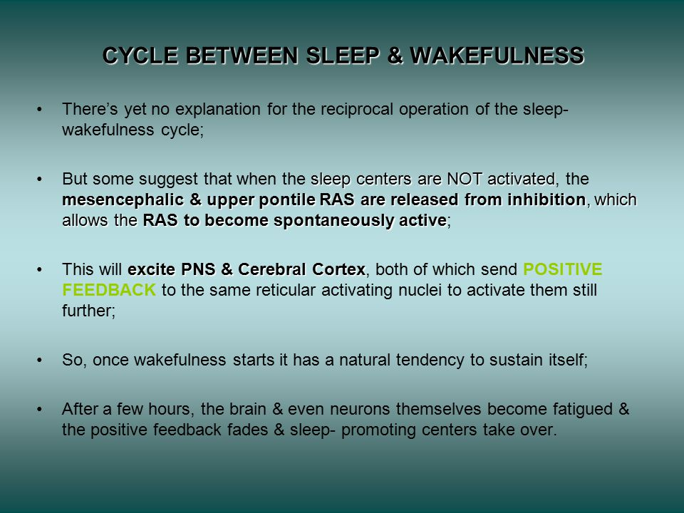CYCLE BETWEEN SLEEP & WAKEFULNESS