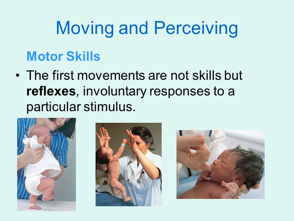 Moving and Perceiving Motor Skills