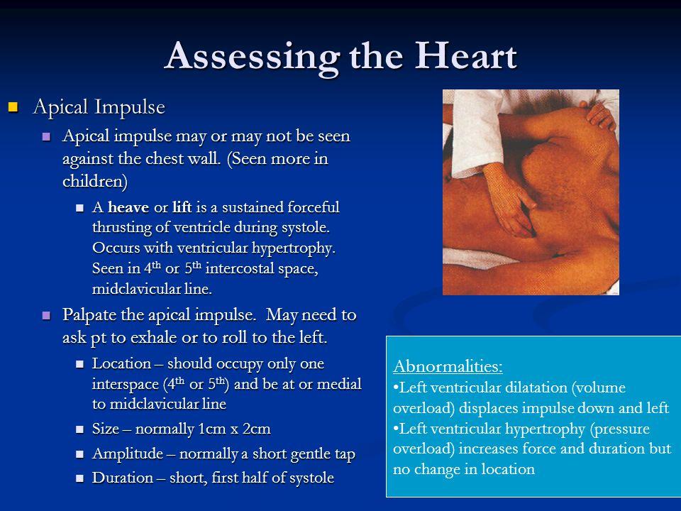 Assessing the Heart Apical Impulse