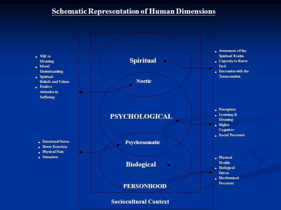 Schematic Representation of Human Dimensions