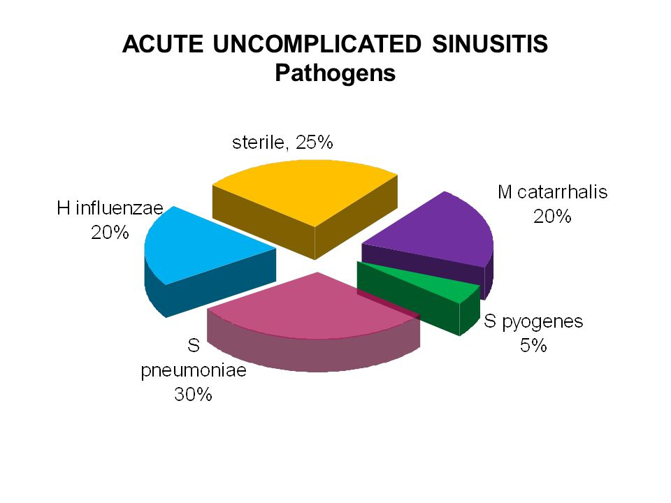 ACUTE UNCOMPLICATED SINUSITIS Pathogens