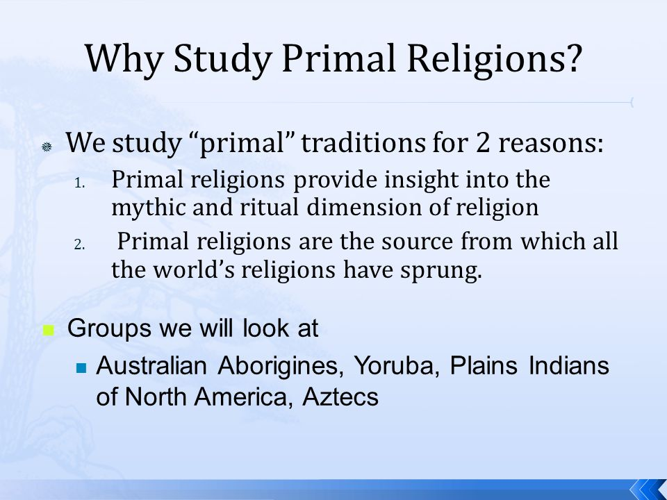 Why Study Primal Religions