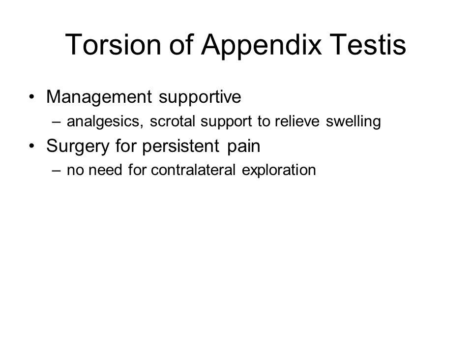 Torsion of Appendix Testis