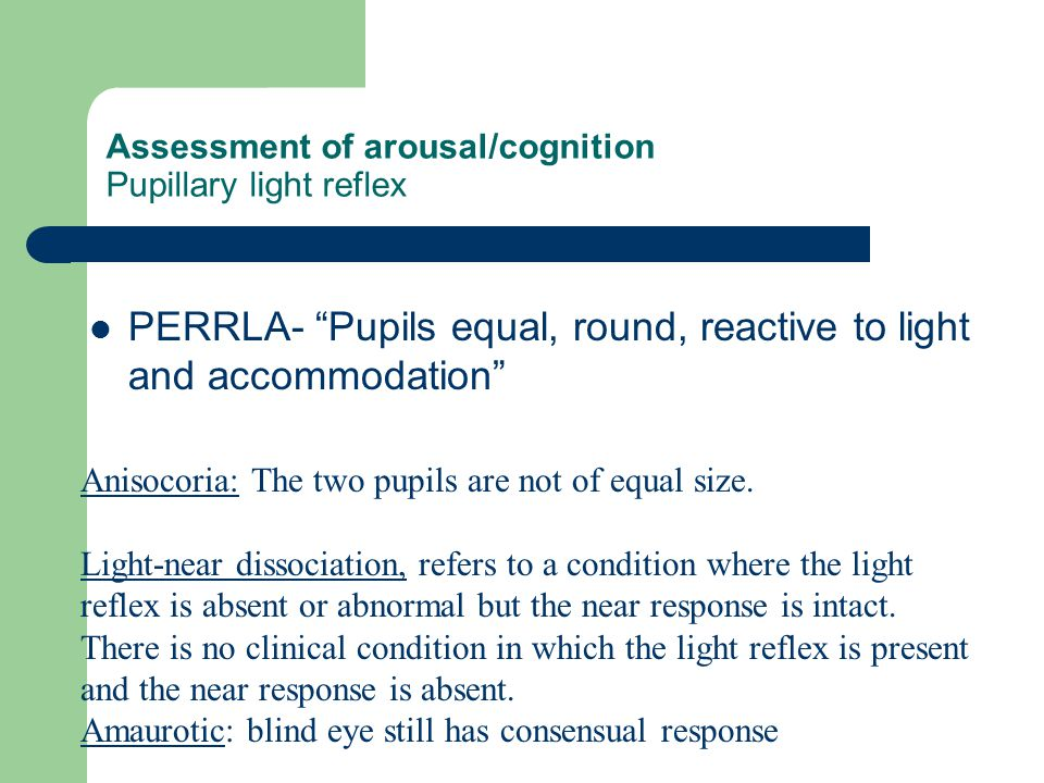 Assessment of arousal/cognition Pupillary light reflex