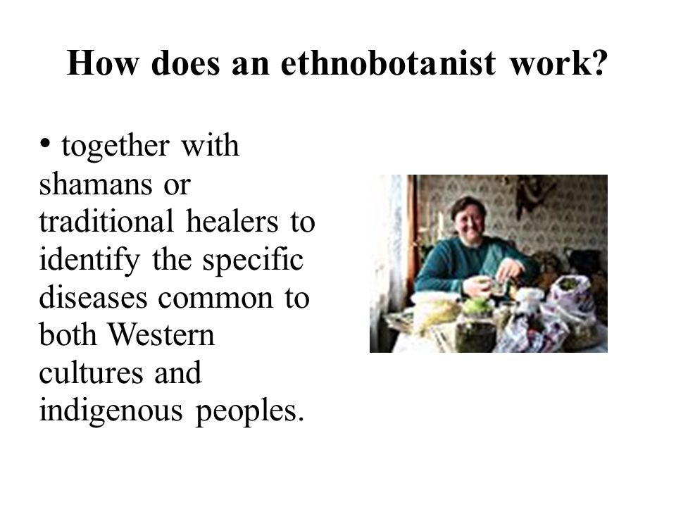 How does an ethnobotanist work