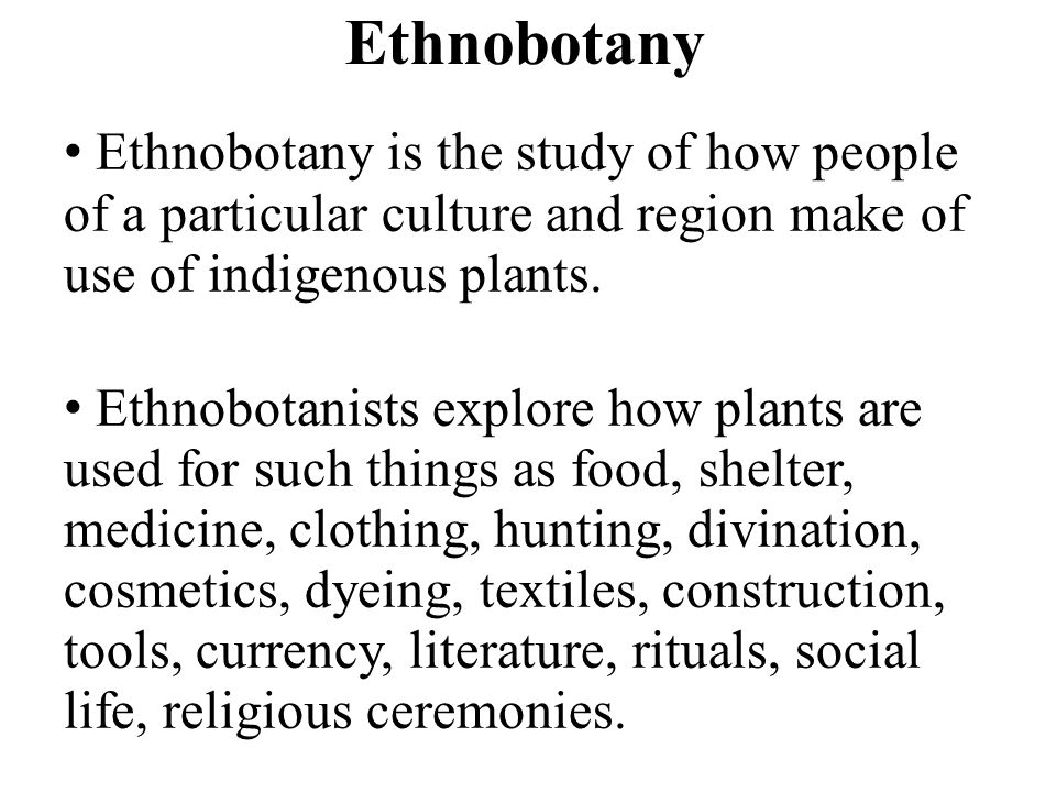 Ethnobotany Ethnobotany is the study of how people of a particular culture and region make of use of indigenous plants.