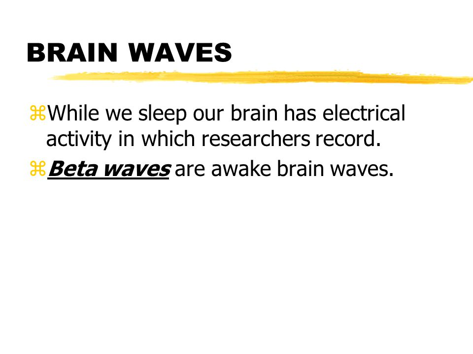 BRAIN WAVES While we sleep our brain has electrical activity in which researchers record.